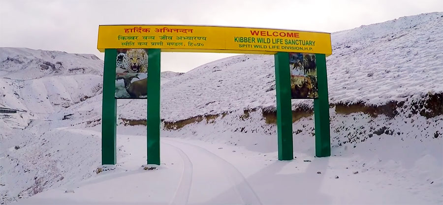 Key Kibber Itinerary for Winter Spiti